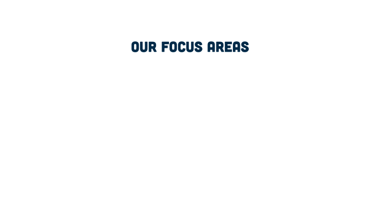 Our focus areas are:
