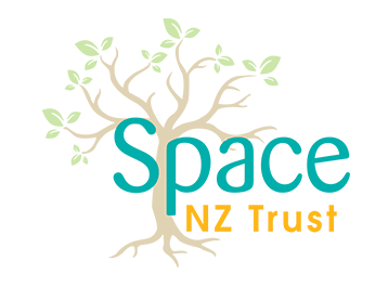 Space NZ logo colour
